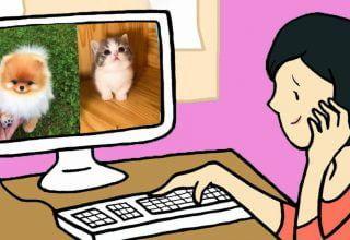 Yavru Hayvanların Fotoğrafına Bakınca Ne Olur?