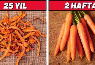 Yıllarca Bozulmadan Dayanabilen 6 Yiyecek