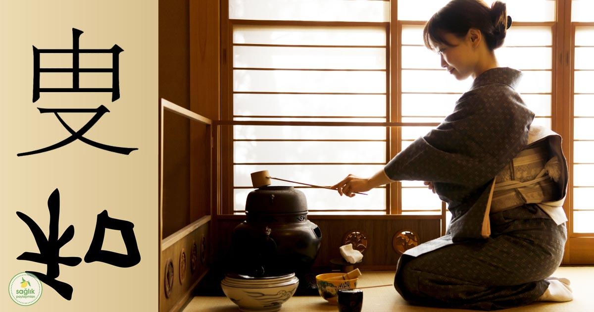 japonların 5s metodu nedir