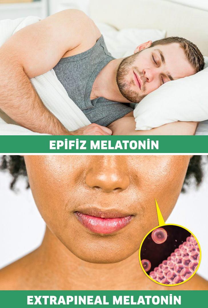 melatonin çeşitleri