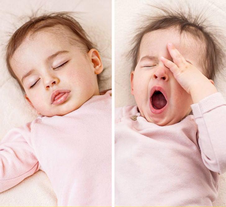 uyku epifiz melatonin